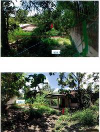 บ้านเดี่ยวหลุดจำนอง ธ.ธนาคารกรุงไทย เวียง ฝาง เชียงใหม่