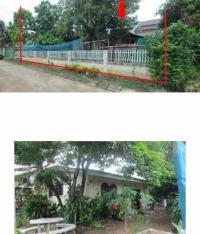 บ้านเดี่ยวหลุดจำนอง ธ.ธนาคารกรุงไทย ศรีดงเย็น ไชยปราการ เชียงใหม่